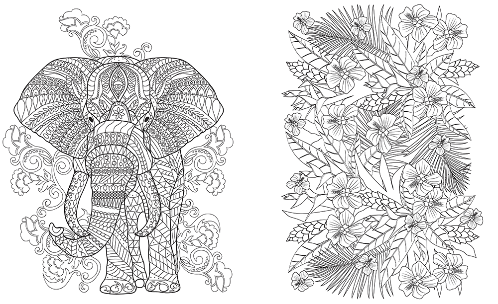 downloadable line drawing of elephant and flowers